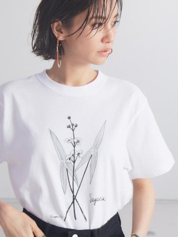 qualite - 【WEB・一部店舗限定】0501SagittariaTシャツ