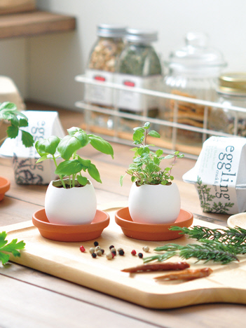 【eggling】エッグリング エコフレンドリー 植物 栽培キット